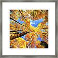 Colorado Autumn Sky Framed Print