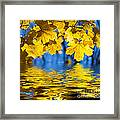 Colorful Autumn Leaves Framed Print by Boon Mee