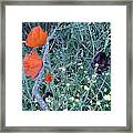 Colorful Bouquet Framed Print