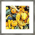 Colorful Gourds  Framed Print