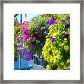 Colorful Large Hanging Flower Plants 1 Framed Print