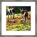Colorful Moose Framed Print