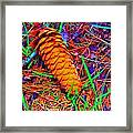 Colorful Pinecone Framed Print