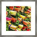 Colorful Swiss Chard Framed Print