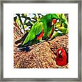 Colorfully Bright Framed Print