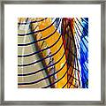 Colors And Lines Framed Print