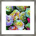 Colors And Roses Framed Print