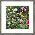 Colors In The Garden Framed Print
