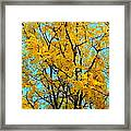Colors Of Fall - Smatter Framed Print