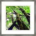 Communication Lost Framed Print by Andrew  Stoffel