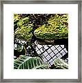 Conservatory Reflections Framed Print