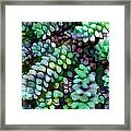 Cool Hued Burro's Tails In The Hot Desert Framed Print