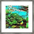 Coos Canyon 23 Framed Print