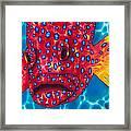 Coral Grouper Framed Print