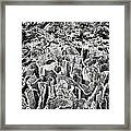 Cork Dome Sculpture In Kew Gardens Framed Print