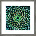 Cosmic Cacti In Spokane Framed Print