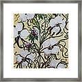 Cotton #1 - King Cotton Framed Print
