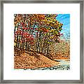 Country Curves And Vultures Framed Print