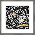 Coy Fish Framed Print