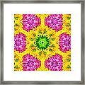 Crazy Daises - Spring Flowers - Bouquet - Gerber Daisy Wanna Be - Kaleidoscope 1 Framed Print