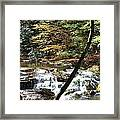 Creek 8 Framed Print