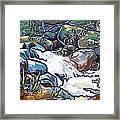 Creek Framed Print by Nadi Spencer