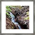 Creeks Fall Framed Print