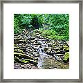 Cresheim Creek Framed Print