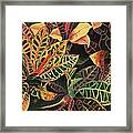 Croton Leaves Framed Print