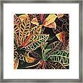 Croton Leaves Framed Print