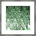 Crystal Green Framed Print