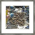 Culling Oysters Framed Print