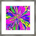 Dahlia Flower Abstract #1 Framed Print