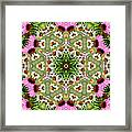 Daisy Daisy Do Kaleidoscope Framed Print