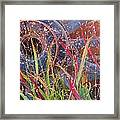 Dance Of The Wild Grass Framed Print