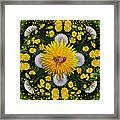 Dandelion Grove Mandala Framed Print