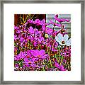 Dare To Be Different  Framed Print by Rebecca Adams