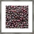 Dark Red Cherries For Sale Framed Print
