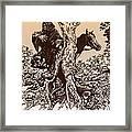 Dark Rider-tolkien Appreciation Framed Print