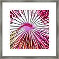 Delicate Orchid Blossom - Abstract Framed Print
