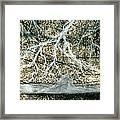 Desert Lightning Framed Print