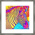 Designs From Nature 1 Framed Print