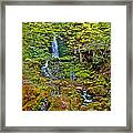 Dickson Falls In Fundy Np-nb Framed Print