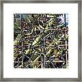Difference Window Framed Print