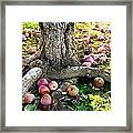 Don't Sit Under The Apple Tree With Anyone Else But Me Framed Print
