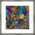 Dramatic Blooms 01 Framed Print