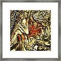 Driftwood 4 Framed Print