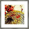 Dry Earth Digital Abstract 4 Framed Print