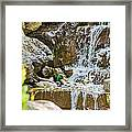 Ducks In The Falls Framed Print