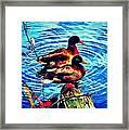 Ducks On A Log Framed Print
